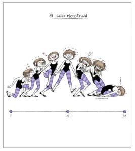 ciclo mesntrual