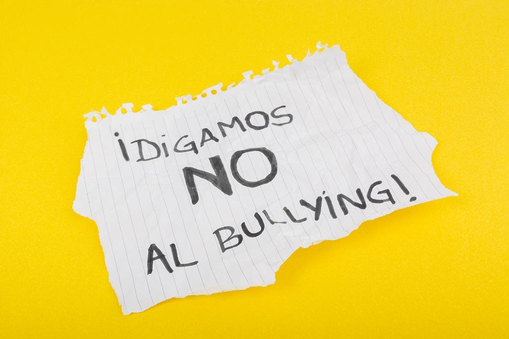 Bullying, una lacra social